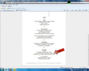 Screenshot af betingelser på Skov & Stubbs hjemmeside